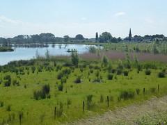 Hagestein Riverside Walk. (helenl2000_uk) Tags: holland netherlands river riverside walk country riverlek hagestein everdingen