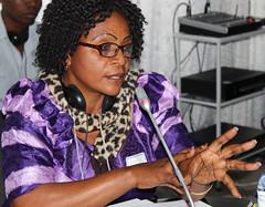 IREX MOZAMBIQUE 2014-05-26L (msp.irexmozambique) Tags: mozambique maputo moambique irex tropicais jornalistas doenas capacitao negligenciadas