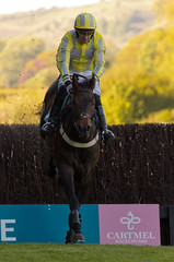 Salut The Jumping (Paul 'Tuna' Turner) Tags: greatbritain england horses sport europe unitedkingdom britain lakedistrict cumbria jockeys horseracing races racecourse cartmel sportingevent racemeeting southlakes nationalhunt jumpracing cartmelraces nationalhuntracing cartmelracecourse