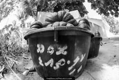 Keeli (nazeee) Tags: atoll 2014 alif raajje thoddoo theraajjeproject