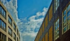 architecture_313