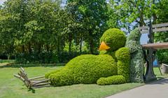 The world 39 s best photos of lvan flickr hive mind - Herramientas para jardineria ...