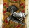 Tenderness (a°solo) Tags: pet cats cute animal sweet kittens felini gatti coccole gattini dolcezze