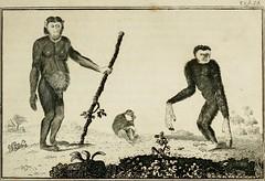 Anglų lietuvių žodynas. Žodis agility reiškia n vikrumas, judrumas lietuviškai.