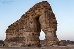 Elephant Mount (TARIQ-M) Tags: sunset elephant mountains art silhouette rock sunrise landscape sand rocks desert ripple dunes wave camels riyadh saudiarabia hdr milkyway alula canonef1635mmf28liiusm elephantmount canoneos5dmarkiii tariqm 100606169424624226321poststariqm1