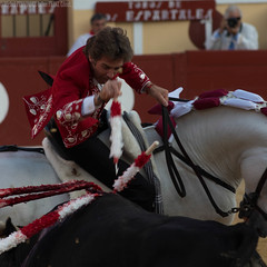 Pablo HERMOZO DE MENDOZA (Franz EDEN) Tags: cheval bull toro taureau ftesdebayonne fiestabrava rejon tauromachie banderilles pablohermosodemendoza