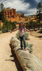 Even more Bryce Canyon (Four Straites) Tags: park utah canyon national bryce