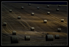 ROUND HAY BALES. 13 (adriangeephotography) Tags: england tractor field lines photography nikon farm farming harvest tracks august hampshire crop combine round land adrian hay gee bales hayrolls markings harvester tyre rotoballe nikon1 nikon1v1 adriangeephotography