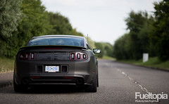 Ford Mustang RTR (Dan Fegent) Tags: usa car power awesome engine automotive american fordmustang v8 musclecar supercharger supercharged rwd matteblack readytorock rearwheeldrive rtr 600bhp worldcars fueltopia vaughngittinjnr rtrspecialedition 57litrev8