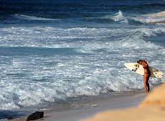 #NorthShore, #Oahu () Tags: ocean vacation holiday praia beach strand island hawaii sand nikon paradise surf waves waikiki oahu surfer candid playa lei insel blond northshore surfboard   hawaiian paparazzi garota honolulu frau 70300mm isle fille plage rtw isla aloha spiaggia vacanze mahalo roundtheworld  beachscene globetrotter le northpacific traeth hangten  cowabunga northatlantic  hang10   10days  gatheringplace worldtraveler  thegatheringplace d700 nikond700    hawaii2011    o   20112509