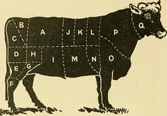 Anglų lietuvių žodynas. Žodis rump roast reiškia uodega kepsnys lietuviškai.