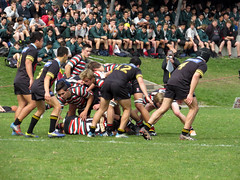 "Whangarei boys 2 • <a style=""font-size:0.8em;"" href=""http://www.flickr.com/photos/84092708@N05/14871180939/"" target=""_blank"">View on Flickr</a>"
