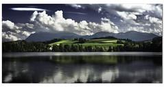 Soppensee (vina-arts) Tags: natur pflanzen landschaft 2014 gewsser