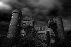 Malahide Castle (alex pieussergues photography) Tags: door longexposure ireland windows chimney sky blackandwhite bw flower tree green castle heritage window monument glass fleur grass leaves wall architecture night landscape leaf flora branch doors noiretblanc spirit ghost vert medieval nb haunted ciel vegetation mystical porte paysage mur nuit arbre chteau fentre mystic feuilles verdure verte fantme herbe feuille irlande flore lieux chemine blason branche lowexposure portes mdieval vgtation gazon blazon buisson hante arbuste poselongue hant hritage longpause pauselongue shrubbush