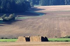 Finished! (:Linda:) Tags: germany village thuringia soil veilsdorf strawbale leite eichigt