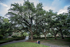 College of Charleston in Charleston, South Carolina (Concert_Photos_Magazine) Tags: city school usa college students education university downtown unitedstates southcarolina charleston lowcountry collegeofcharleston cofc charlestoncounty 11644211802
