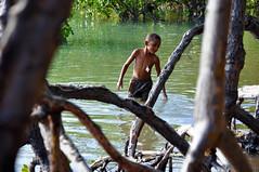 mangue (Harry Firmo) Tags: rio harry criana enfant harryfirmo