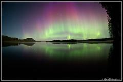 Northern Lights (mmoborg) Tags: sweden aurora sverige northernlights auroraborealis thepinnaclehof tphofweek283
