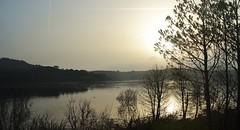 Lago di Baratz (finieddu) Tags: sardegna lago sardinia alba sassari sardinien sardaigne cerdea sardenya folaghe sardinie sardunya baratz portoferro sardinija sardenha sardiinia sardea  lagodibaratz   sardiniya szardnia         tsairdn sardenja   sardnija      sardinia      isardinia