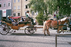 Horse Wagon. (MB Art Photography) Tags: leica city horse salzburg beautiful weather wagon tour sightseeing tourist enjoy 200 fujicolor afc1