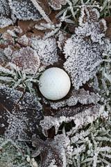 Frosty golf ball (Arkle1) Tags: smileonsaturday roundandround