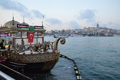 Istanbul 7 359 (Krasivaya Liza) Tags: istanbul7 istanbul turkey turkish travel culture cultural europe nikon