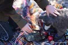 Arizona Picnic 13 (Tayma-Leigh) Tags: bjd minifee mnf fairyland rheia inessencecreations inessence crazykimochi gyhm fleecefeatherstudios
