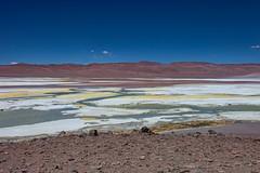 Valley of salt. (david takes photos) Tags: losflamencosnationalreserve reservanacionallosflamencos salardepujsa atacama chile flamingo flamingoes sanpedrodeatacama regióndeantofagasta x