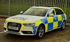 North Wales Police | Audi A4 | Roads Policing Unit | CX13 CVT (Chris' 999 Pics) Tags: north wales police rpu roads policing unit traffic car law enforcement security emergency 999 112 crime criminal prevention audi a4 cx13cvt