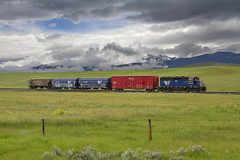 Harrison 844 (MRL 390) Tags: railroad sky green clouds train montana branch cloudy rail link bigsky localtrain lowclouds 6th mrl stormclouds freighttrain subdivision bigskycountry tobaccorootmountains branchline montanaraillink localfreight harrisonbranch sappingtonmontana mrlharrisonlocal mrlharrisonbranch mrl844 mrl6thsubdivision mrl844local mrl9thsubdivision montanaraillink844 montanaraillink6thsubdivision