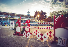 bursting (Jen MacNeill) Tags: show sunset horse animal jumping ride action devon sunburst laurachapot
