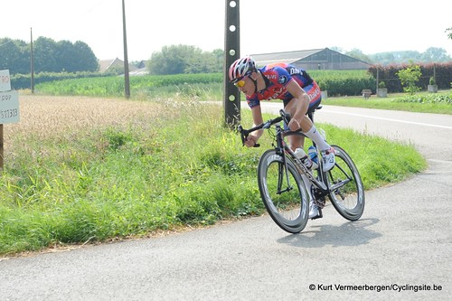 Geel Oosterlo  (151)