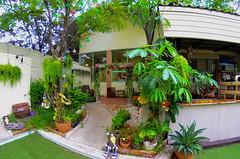 มุมสวยๆภายในร้านบ้านต้นไข่ ถนนสามัคคี นนทบุรี