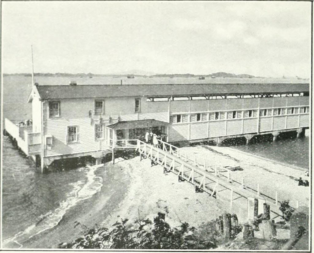 """Image from page 149 of """"Municipal and official handbook of the City of Auckland, New Zealand"""" (1922)"""