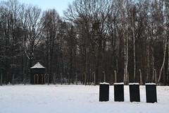 Auschwitz (006)