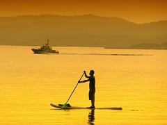 silhouette jamesbay vancouverisland sunset paddleboarding lekwungen lekungen