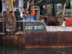 Cat Eyes and Gulls (AntyDiluvian) Tags: boston harbor massachusetts gulls northshore gloucester fishingboat cateyes trawler freeloader capeann rockyneck rockyneckartcolony