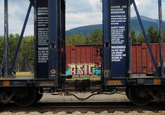 ASIC (YardJock) Tags: railroad graffiti etc spraypaint boxcar freighttrain asic benching paintedsteel benchreport