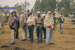 IMG_2895 1 (gaujourfrancoise) Tags: voyage travel india elephant portraits countryside asia farmers country kerala asie camels campagne buffalos rajasthan inde paysans uttarakhand gaujour