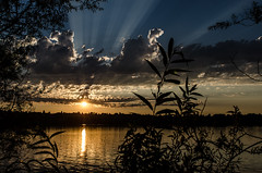 Greenlake Sunset (Brian Xavier) Tags: seattle clouds photography sunsets greenlake pacificnorthwest sunrays pnw naturalframing goldenlight brightsun seattlearea photographicarts greenlakesunset northwestisbest bxavier bxphoto brianxavierphotography brianxavier bxfoto bxfotocom
