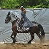 Wheaton, IL, DuPage County Fair, Horse Show (Mary Warren 10.7+ Million Views) Tags: horse horseshow rider coth dupagecountyfair wheatonil citrit
