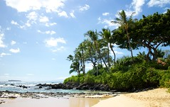 Secret Beach (davidmnelson) Tags: hawaii secretbeach maui hi makenacove paakocove