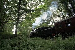 If you go down to the woods... (Keith Wilko) Tags: england countryside woods br trains steam darlington greenery worcestershire railways britishrail locomotives railroads steamtrain locos flyingpig steamtrains svr steamlocomotive lms severnvalleyrailway britishrailways lmsr steamlocos ivatt 43106 damf ivattclass4 thesevernvalley ivattclass4mt 43106flyingpig flyingpig43106