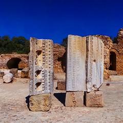 Latin words. Please turn your phone... (7-bc) Tags: tunisia carthage tunisie uploaded:by=flickstagram instagram:photo=78591444523399966517785338 instagram:venuename=antoninebaths2ccarthagetunisia instagram:venue=241451710