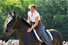 Cheval de Mrens - Dmonstration de dressage (Franois D09) Tags: cheval arige mrens bouan journesnationalesduchevaldemrens