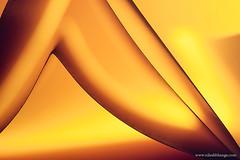 Legs (bnilesh) Tags: light abstract closeup paper shapes
