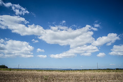 (Katarina Drezga) Tags: nature clouds countryside serbia vojvodina srbija fileds srem nikkor1855mm outdoorphotography nikond3100
