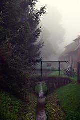 Nebel am Morgen (b_represent) Tags: fog germany deutschland thringen nebel thuringia morgen brheim