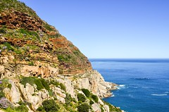 Chapman's peak drive, Cape Town peninsula (jbdodane) Tags: africa bicycle capetownpeninsula chapmanspeak chapmanspeakdrive cycletouring cycling cyclotourisme day666 southafrica velo westerncape freewheelycom jbcyclingafrica