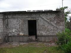 SANY8906